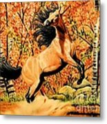 Autumn Frolick Metal Print