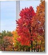 Upward - Autumn High Metal Print
