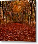 Autumn II Metal Print