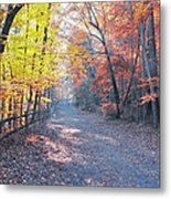 Autumn On Forbidden Drive Metal Print