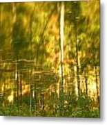 Autumn Reflections In Tennessee Metal Print