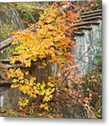 Autumn Steps Near Smalls Falls In Maine Metal Print