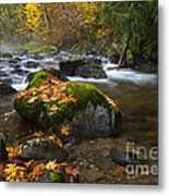 Autumn Stream Metal Print