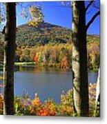 Autumn Trees 1 Metal Print