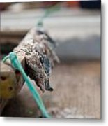 Bait On Hooks  Metal Print