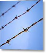 Barbed Wire Close Metal Print