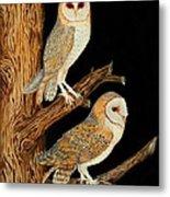 Barn Owl Duo Metal Print