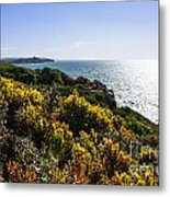 Bass Strait Ocean Landscape In Tasmania Metal Print