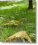 Beautiful Lush Vobrant Image Of Ancient Woodland Metal Print by Matthew Gibson