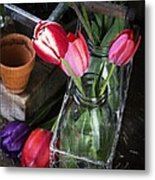 Beautiful Spring Tulips Metal Print by Edward Fielding