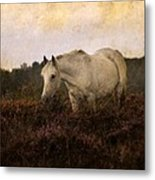 Bed Of Heather Metal Print