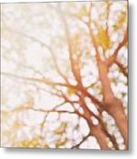 Beneath A Tree  14 5284  Diptych  Set 1 Of 2 Metal Print