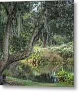 Beside The Pond Metal Print