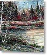 Birch Lake Metal Print