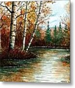 Birch Pond Metal Print