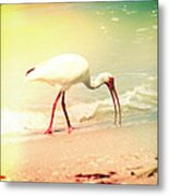 Bird Breakfast Metal Print