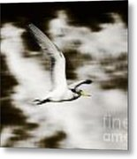 Bird Flying In The Clouds Metal Print
