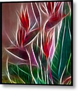 Bird Of Paradise Fractal Metal Print by Peter Piatt