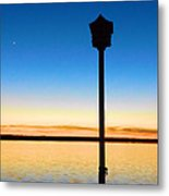 Birdhouse With A View Metal Print