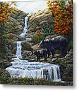 Black Bear Falls Metal Print by Crista Forest