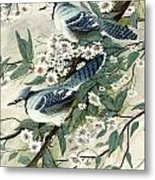 Blue Jays And Blossoms Metal Print