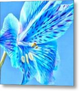 Blue Summer Metal Print