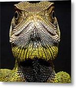 Bocourts Dwarf Iguana Choco Rainforest Metal Print