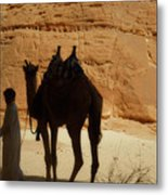 Bou Bou Camel With Beduin Owner  Metal Print