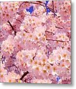 Bursting With Blossoms Metal Print