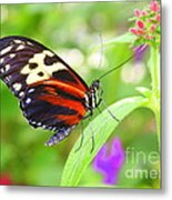 Butterfly On Bush Metal Print