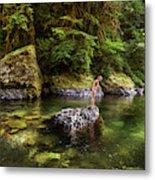 Cascade Locks, Oregon, Usa. A Woman Metal Print