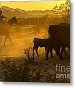 Cattle Drive 6 Metal Print