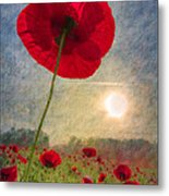 Celebrate The Day Metal Print
