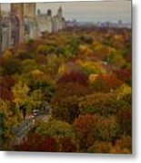 Central Park In Autumn Metal Print