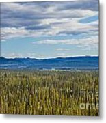 Central Yukon T Canada Taiga And Ogilvie Mountains Metal Print