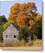 Changing Colors  Metal Print