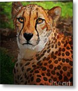 Cheetah Mama Metal Print
