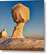 Cock And Mushroom Formation In White Desert Metal Print