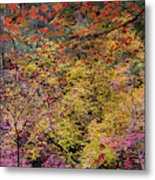 Colorful Leaves On A Tree Metal Print