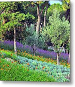 Colorful Park With Flowers Metal Print
