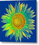 Colourful Sunflower Metal Print