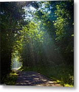 Come To The Light Metal Print by Paul Herrmann