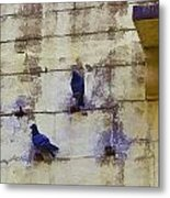 Couple Of Pigeons On A Wall Metal Print