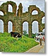 Cow By Second Century Aspendos Aqueduct-turkey Metal Print