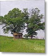 Cozy Shack  Metal Print