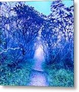 Craggy Gardens North Carolina Blue Ridge Parkway Autumn Nc Sceni Metal Print