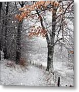 Danish Winter  Metal Print