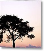 Day's End 1 Metal Print