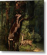 Deer In The Forest Metal Print