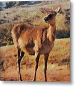 Deer On Mountain  Metal Print
